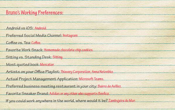 Bruno Gavino Codedesign Working Preferences