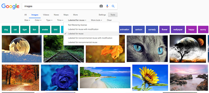 Google Images Usage Settings